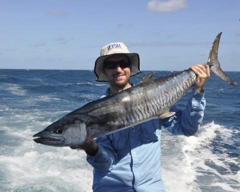 fish2 070 (1024x820)